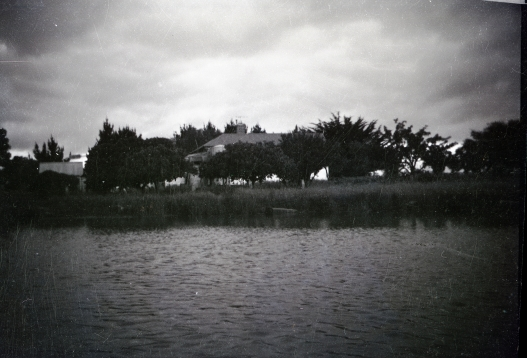 Walkers Farm house, looking across the dam and orchard. 1970.