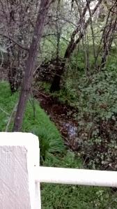 water under footbridge