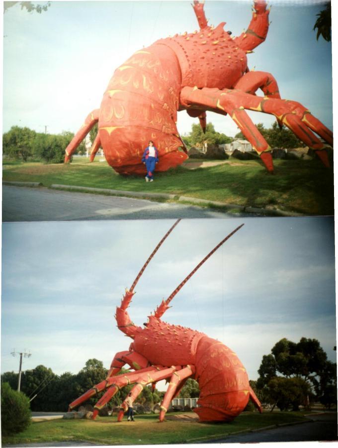 crayfish2
