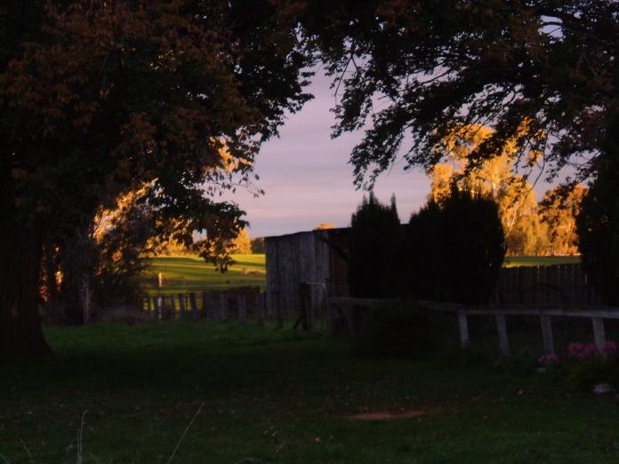 Sunset, 2011, FujiFilm Finepix A607