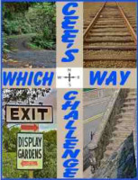 cees which way