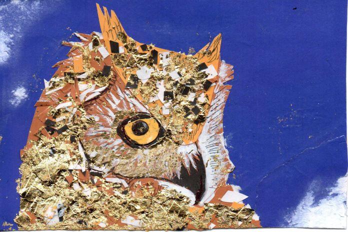 05 owl