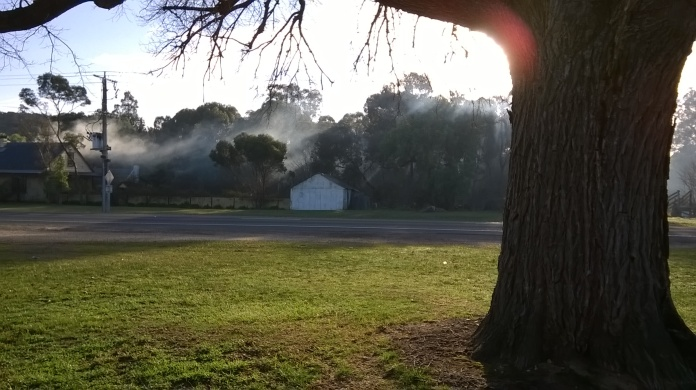 We all have wood heaters around here, and these mornings the smoke often hugs the ground.
