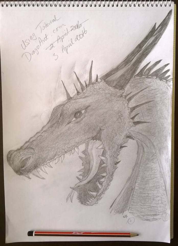 dragon head drawing