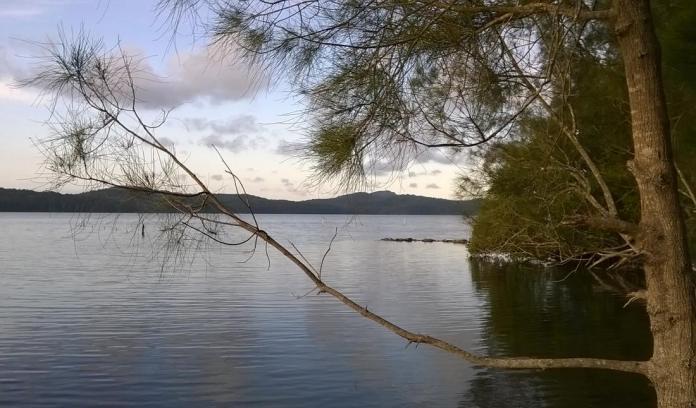 Lake, Laurieton, NSW
