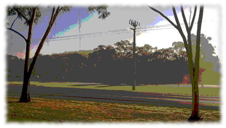 treesroad7