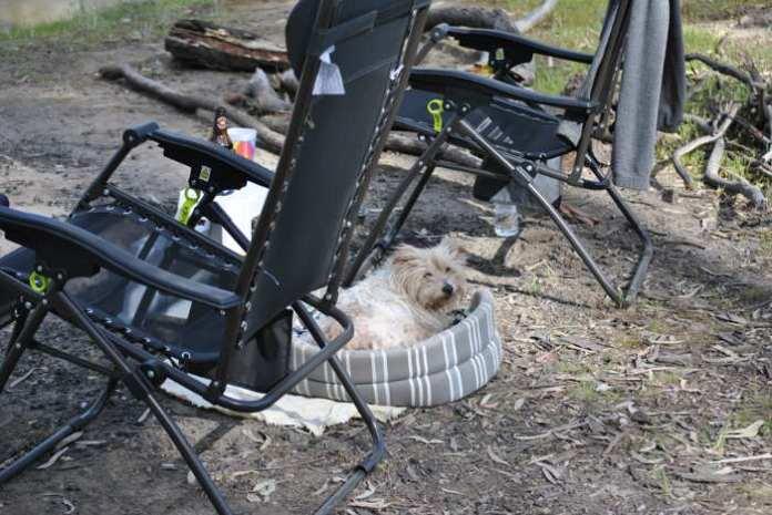 campingchairsvika.JPG