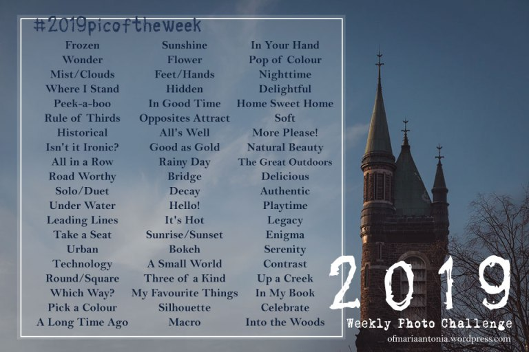 Maria's Weekly Pic Challenge list