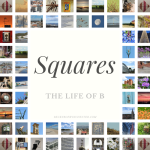 squares_logo
